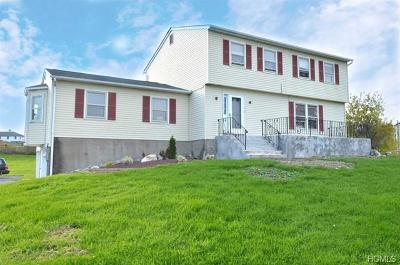 Lagrangeville Single Family Home For Sale: 19 South Smith Road