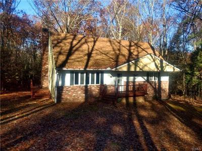 Pine Bush Single Family Home For Sale: 64 Papuga Road