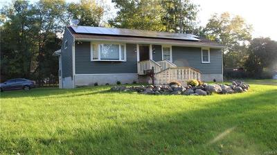Washingtonville Single Family Home For Sale: 21 Patricia Lane