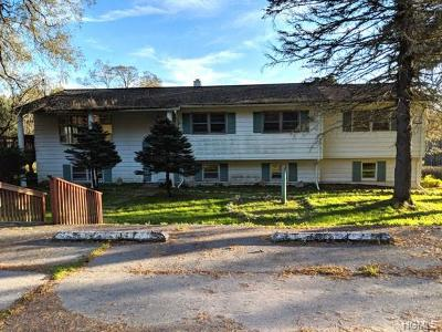 Parksville NY Single Family Home For Sale: $89,900