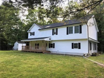 Sullivan County Single Family Home For Sale: 261 Sgt Andrew Brucher Road