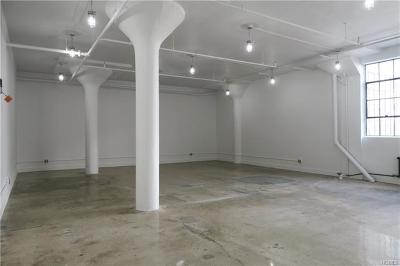Dobbs Ferry Commercial For Sale: 145 Palisade Street #219