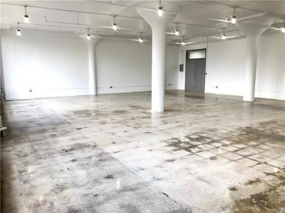 Dobbs Ferry Commercial For Sale: 145 Palisade Street #222