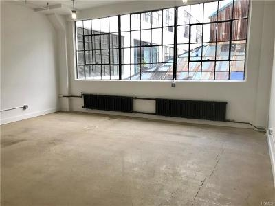 Dobbs Ferry Commercial For Sale: 145 Palisade Street #211