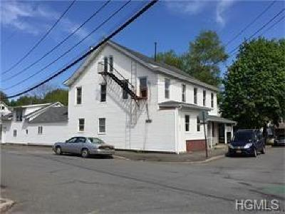 Orange County, Sullivan County, Ulster County Rental For Rent: 15 Main Street #3