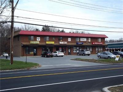 Monroe Commercial For Sale: 562 State Route 17m