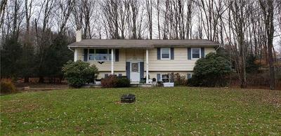 Neversink, Grahamsville, Denning Single Family Home For Sale: 7513 State Route 42
