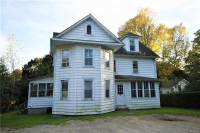 Dutchess County Multi Family 2-4 For Sale: 24 Cottage Avenue