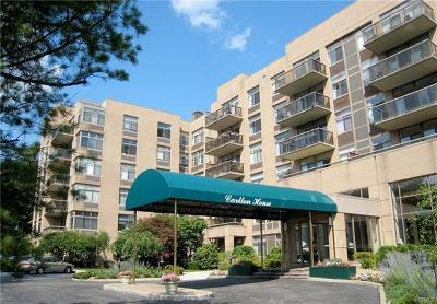Larchmont Rental For Rent: 35 North Chatsworth Avenue #6U