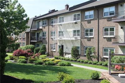 Rental For Rent: 294 Piermont Avenue #3A