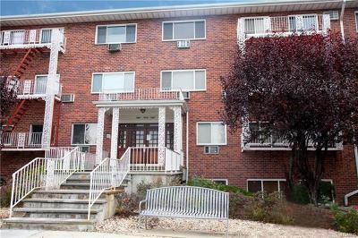 New Rochelle Co-Operative For Sale: 838 Pelhamdale #1E