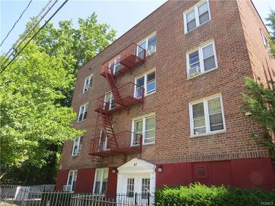 Yonkers Condo/Townhouse For Sale: 47 Point Street #1A