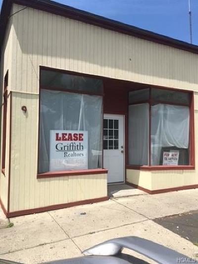 Rockland County Commercial For Sale: 9 South William Street