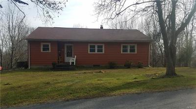 Port Jervis Single Family Home For Sale: 576 Old Mountain Road