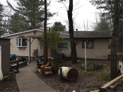Mongaup Valley NY Single Family Home For Sale: $55,000