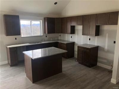 Orange County, Sullivan County, Ulster County Rental For Rent: 30 Cameron