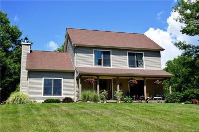 Wallkill Single Family Home For Sale: 99 Corey Lane