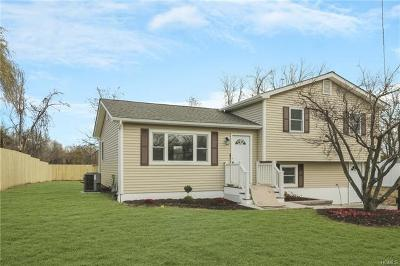 Fishkill Single Family Home For Sale: 47 Riverview Drive