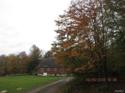 Livingston Manor NY Single Family Home For Sale: $149,900