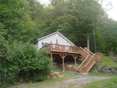 Orange County, Sullivan County, Ulster County Rental For Rent: 36 Torne Road