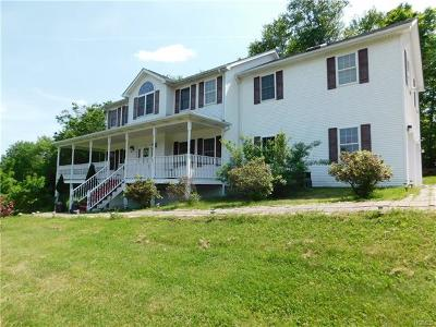 Sullivan County Single Family Home For Sale: 338 Mount Cliff Road