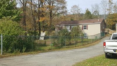 Sullivan County Single Family Home For Sale: 54 Pine Kill Road