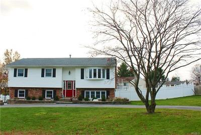 Middletown Single Family Home For Sale: 11 Mills Road