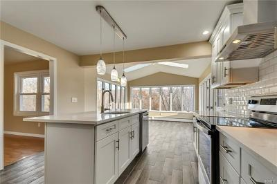 Washingtonville Single Family Home For Sale: 28 Helms Hill Road