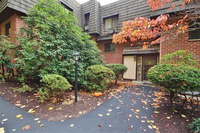 Ossining Condo/Townhouse For Sale: 4 Briarcliff Drive South #7