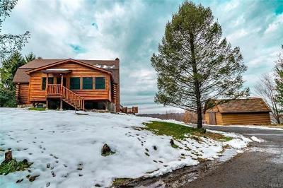 Single Family Home For Sale: 487 Ridge Road