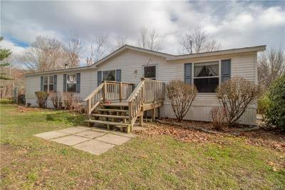 Pine Bush Single Family Home For Sale: 17 Schwab Lane