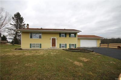 Walden Single Family Home For Sale: 2344 Albany Post Road