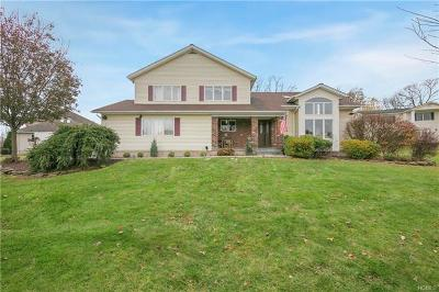 Rockland County Single Family Home For Sale: 7 Carlton Court