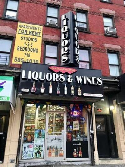 Bronx Commercial For Sale: 3009 Thrid Avenue