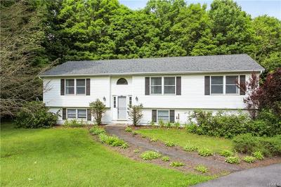 Amenia Single Family Home For Sale: 100 Cascade Road