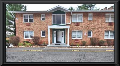 Haverstraw NY Condo/Townhouse For Sale: $125,000