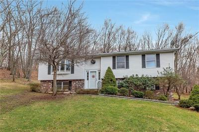Westchester County Single Family Home For Sale: 25 Jo Drive