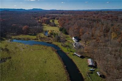 Dutchess County Residential Lots & Land For Sale: 884 Noxon Road