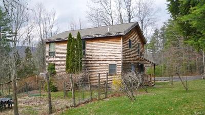 Boiceville Single Family Home For Sale: 254 Upper Boiceville Road #A