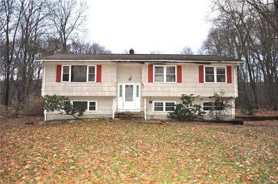 Single Family Home For Sale: 22 Squirrel Hill Road