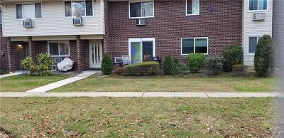 Condo/Townhouse For Sale: 2b Blue Hill Commons Drive #B