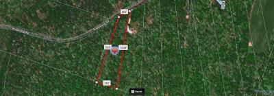 Cochecton Residential Lots & Land For Sale: Lot #17 Skipperene Road