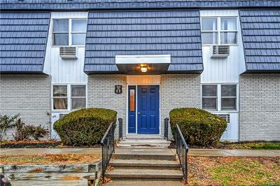 Dutchess County Condo/Townhouse For Sale: 20 White Gate Drive #F