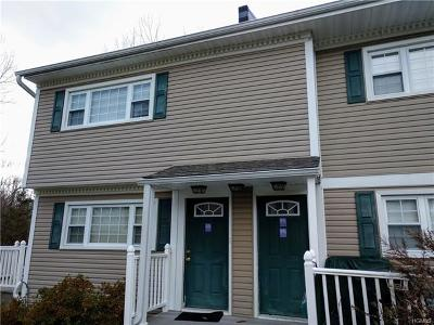 Dutchess County Condo/Townhouse For Sale: 375 Salt Point Turnpike #5C