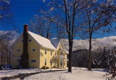 Washingtonville Single Family Home For Sale: 120 Round Hill Road