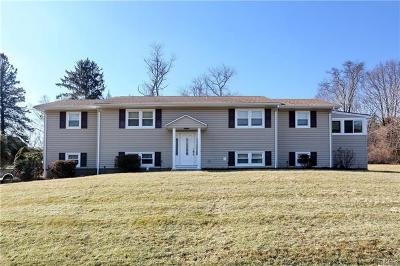 Rockland County Single Family Home For Sale: 27 Raymond Avenue