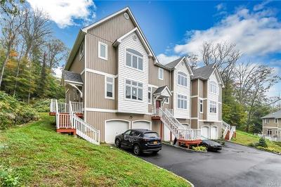 Fort Montgomery Condo/Townhouse For Sale: 7 Lakeview Drive