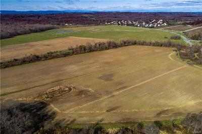 Poughkeepsie Residential Lots & Land For Sale: 884-886 Noxon Road