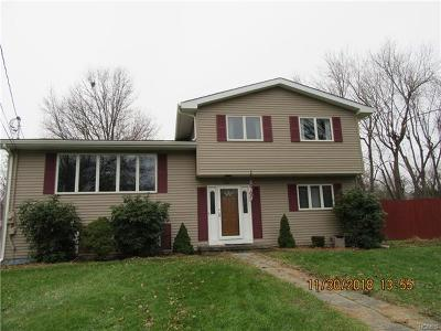 Washingtonville Single Family Home For Sale: 12 Billy Avenue