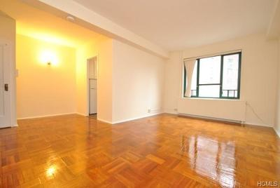 Bronx County Condo/Townhouse For Sale: 7 Metropolitan Oval #5E